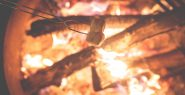 Canva - Roasting Marshmallows on a Campfire (1)